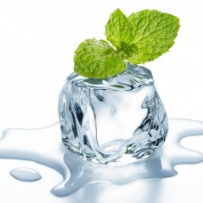 Ice Mint E Liquid